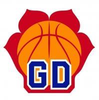 来了!广东第五个顶级职业篮球俱乐部!全队一半是国手啊